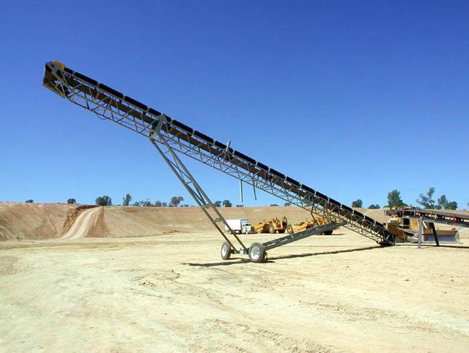 Radial Conveyor - MANN STANDARD MACHINERY CONVEYOR